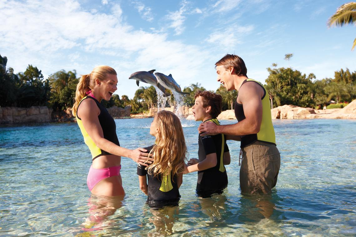 Discovery Cove - Day Resort with Dolphin Swim Package